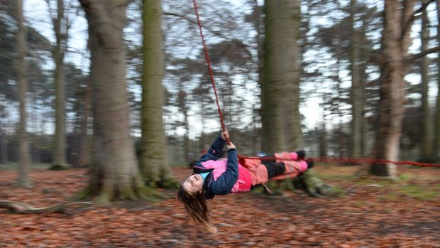 Maebh has a swing at the Phoenix Forest School. Photograph: Dara Mac Dónaill / The Irish Times