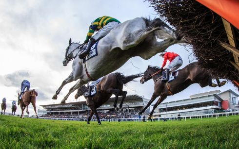 MARES' HURDLE: A view of the Advent Insurance Irish EBF Mares Hurdle. Photograph: James Crombie/Inpho