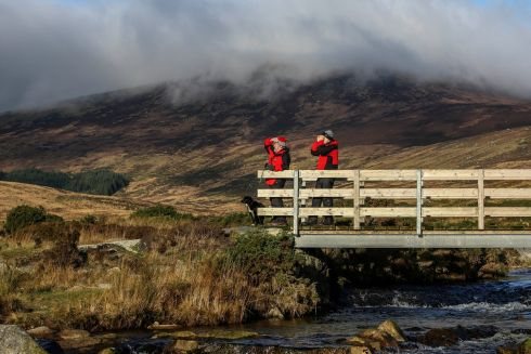 TO THE RESCUE: Henry Smith and Alun Sanders, accompanied by Ellie from the Search and Rescue Dog Association (Sarda), on a training exercise on St Kevin's Way at the Wicklow Gap. Sarda dogs are used by the emergency services in rescue, injury and recovery operations. Photograph: Garry O'Neill