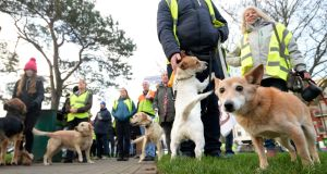 Fingal Dog Owners Group, in Malahide Co Dublin over the weekend ahead of the protest march calling on Fingal County Council to reverse the new restrictions for dogs in public parks. Photograph: The Irish Times