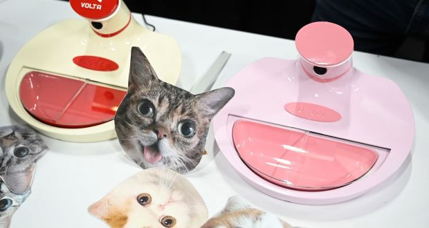 Mookkie, a smart pet feeder which recognizes individual animals, is displayed ahead of CES 2019  in Las Vegas, Nevada. Photograph: ROBYN BECK/AFP/Getty Images