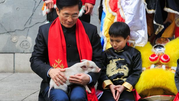 Jieyuan Liu (9) and Chinese ambassador to Ireland Yue Xiaoyong with a piglet during the launch of the programme for the Dublin Chinese New Year Festival. This year will celebrate the year of the pig. Photograph: Gareth Chaney/Collins