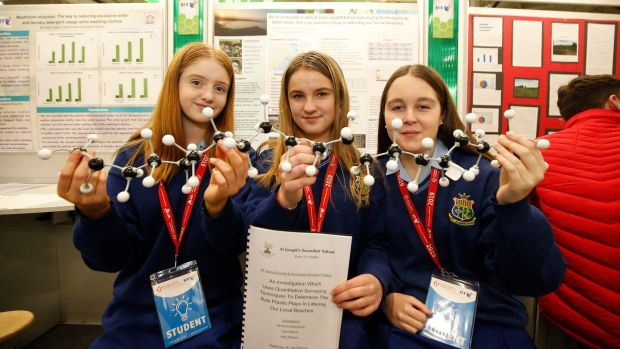 Participants at the 2019 BT Young Scientist and Technology Exhibition. Photograph: Nick Bradshaw/The Irish Times
