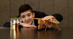 Rian Byrne, a pupil at Coláiste Chill Mhantáin, Co Wicklow, with elements of his project looking at how effectiveness of honey as a health food can be measured. Photograph Nick Bradshaw
