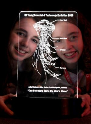 INTERE-STING: Aoife Waldron and Ailbhe Dooley from Coláiste Iognáid SJ in Galway with their project 'Can Scientists Tame the Lion's Mane Jellyfish' at the BT Young Scientist & Technology Exhibition. Photograph: Chris Bellew/Fennell Photography