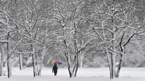 MUNICH: A pedestrian walks with an umbrella in a snow covered park in Munich, southern Germany on January. Photograph: Christof Stache/AFP/Getty Images