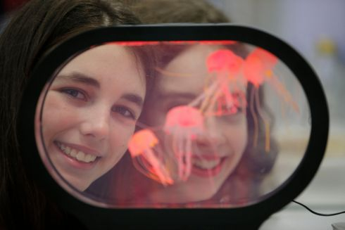 BT Young Scientist & Technologist of the Year 2019 (Day 1). Pictured are Aoife Waldron & Ailbe Dooley Colaiste Ignoaid Galway at this year?s competition project about Lion's Mane Jellyfish.  Photograph Nick Bradshaw for The Irish Times
