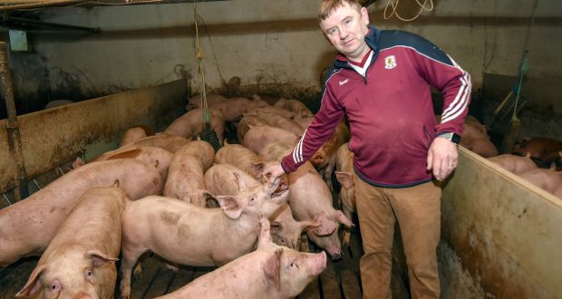 """The worst-case scenario is a hard border, and people won't accept that."" Frank Brady at his pig farm in Cootehill, Co Cavan. Photograph: Philip Fitzpatrick"