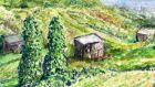 Allotments with runner beans. Illustration: Michael Viney