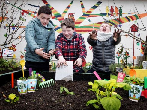 GREEN THUMBS: Helping to launch the national Big Grow initiative at St. Brendan's School Artane in Dublin are, from left, Cian Quinn (10) in 4th class, Stefan O'Dowd (11) in 5th class and Reece King (10) also in 5th class. The GIY and Innocent Drinks big grow project enables school children across Ireland to grow their own food in the classroom this spring using free growing packs which will be distributed by GIY and Innocent. Photograph: Mark Stedman