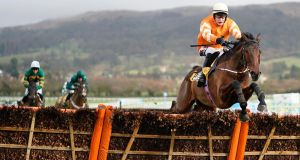 JJ Slevin riding Fakir D'Oudairies clear the last to win the JCB Triumph Trial Juvenile Hurdle at Cheltenham Racecourse. Photograph: Alan Crowhurst/Getty Images