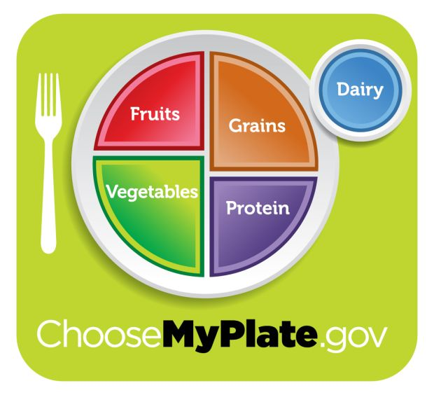 The US MyPlaate healthy eating visual