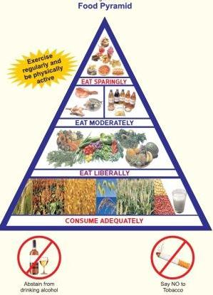 Milk features on the bottom of the Indian food pyramid