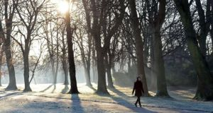 It was indeed a 'dry January' across the country, according to Met Éireann. File photograph: Eric Luke/The Irish Times