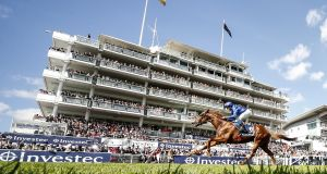 The Speed Gene test analyses a racehorse's DNA to identify the best distance at which it should compete. Photograph: Alan Crowhurst/Getty Images