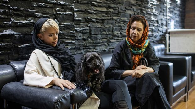 Mandana and her mother with Mandana's four-year-old dog at the vet clinic in Tehran. Photograph: Arash Khamooshi via The New York Times