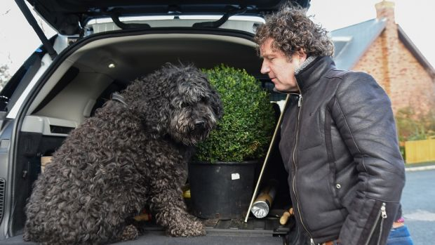 Diarmuid Gavin and Roxy the goldendooddle, departing for a road trip around Co Wicklow.