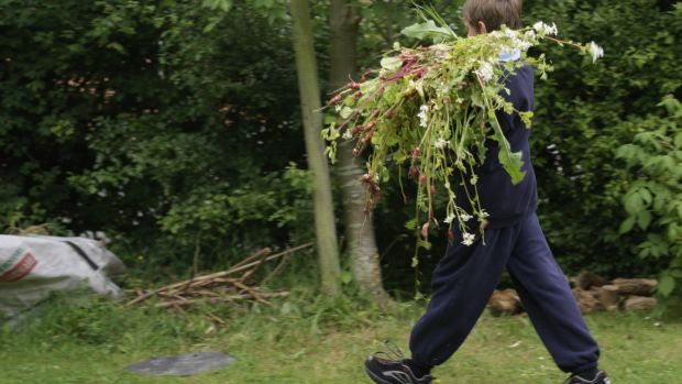 It takes discipline and a certain dedication to make the perfect compost heap. Photograph: Richard Johnston