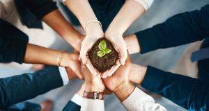 Employees felt good when their workplace is working to reduce its environmental impact. Photograph: iStock