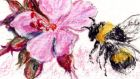 Bumblebee. Illustration: Michael Viney