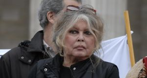 Brigitte Bardot makes a brief appearance at an animal rights demonstration. She runs the Brigitte Bardot Foundation for the welfare of animals. Photograph by John van Hasselt/Getty Images