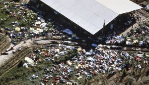 Dead bodies lie around the compound of the Peoples Temple cult on November 18th, 1978 after more than 900 members of died from drinking cyanide-laced Kool Aid; Photograph: David Hume Kennerly/Getty Images