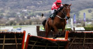 Laurina will run in the Coral Quevega Hurdle at Punchestown on Wednesday. Photograph: James Crombie/Inpho