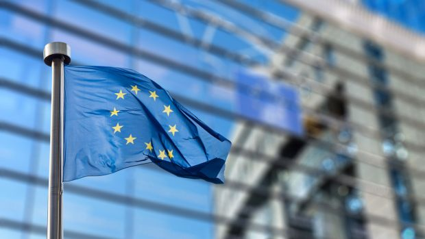 Farmers are calling for a big increase in EU supports, and there is some precedent for this. Photograph: iStock