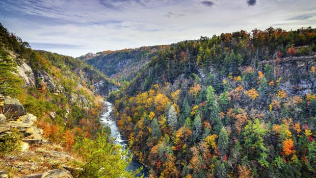 Tallulah Gorge in Georgia. Photograph: getty Images/iStock