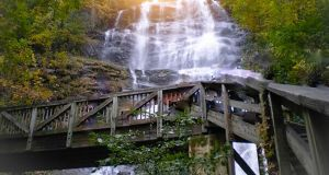 Amicalola Falls is Georgia's tallest waterfall. Photograph: Getty Images/iStock