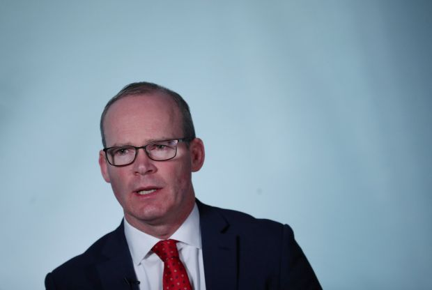 Tánaiste Simon Coveney: 'I don't think we should pretend that Ireland should be immune from challenges that are very difficult to deal with from a technical point of view'. Photograph: Hannah McKay/Reuters