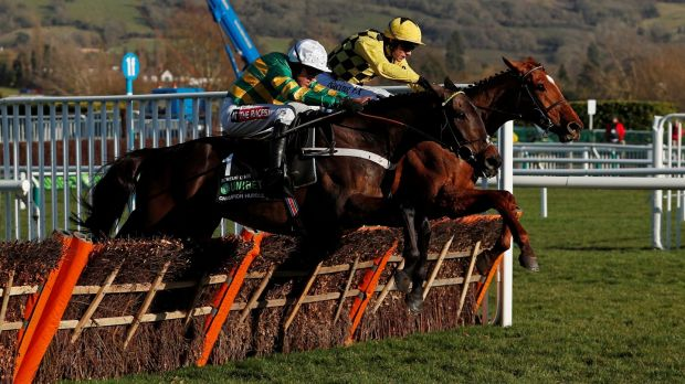 Buveur D'Air ridden by Barry Geraghty (left) in full flight at last year's Cheltenham Festival. Photograph: Andrew Boyers/Reuters
