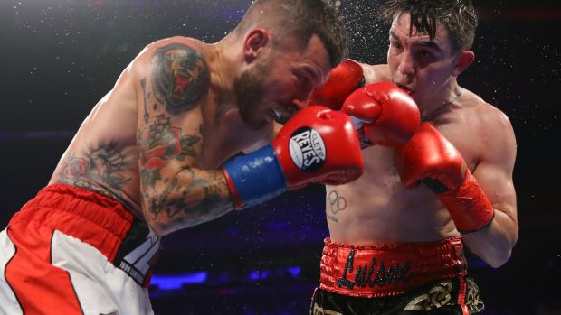 Michael Conlan in action against Ibon Larrinaga in New York last year. Photograph: Tom Hogan/Inpho