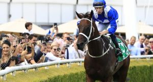 Winx notched up her 23rd Group One win at Royal Randwick. Photograph: Mark Evans/Getty