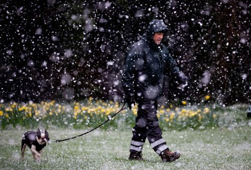 Karl Meghen from Raheny and his dog Beans on a walk through the snow in St Anne's Park, Dublin 3. Photograph: Tom Honan/The Irish Times