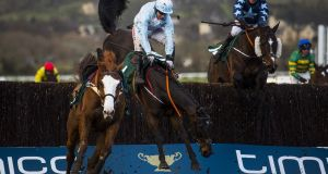 Some Plan, ridden by Noel Fehily,  falls at the last during the  Grand Annual Challenge Cup Handicap Chase at Cheltenham in 2018. The Henry de Bromhead-trained horse was one of seven horses to die at Cheltenham last year, three of which came in the Grand Annual. Photograph: Justin Setterfield/Getty Images