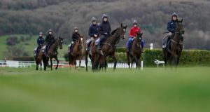 The Bulmers cider maker C&C is backing this week's Cheltenham Gold Cup. Photograph: Alan Crowhurst/ Getty Images)