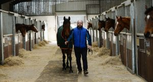 John McConnell at Rock View Stables with Hannon, who is running at  Cheltenham. Photograph: Alan Betson / The Irish Times