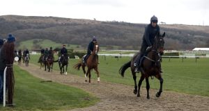 Apple's Jade (right) on the gallops ahead of Champion Day of the 2019 Cheltenham Festival at Cheltenham Racecourse. Photo: Simon Cooper/PA Wire