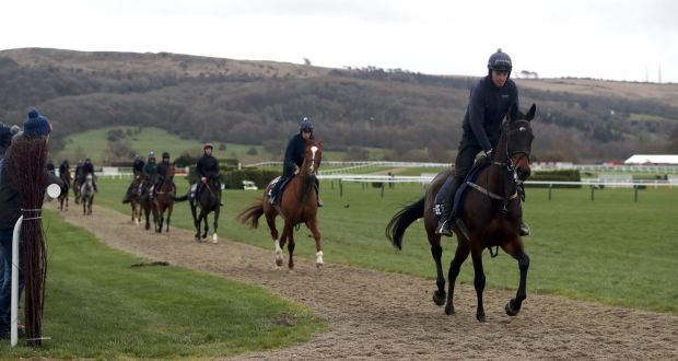 7d807b81a5a Apple s Jade (right) on the gallops ahead of Champion Day of the 2019  Cheltenham