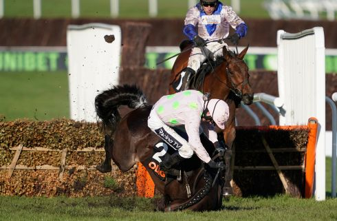LAST WALTZ: Ruby Walsh falls from Benie Des Dieux at the last as Harry Skelton, riding Roksana, goes on to win The OLBG Mares' Hurdle at Cheltenham Racecourse in Cheltenham, England. Photograph: Alan Crowhurst/Getty