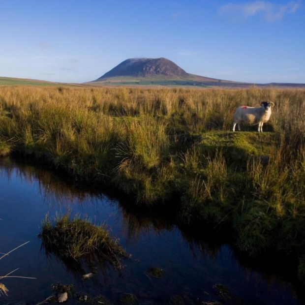 St Patrick's route: Slemish Mountain. Photograph: NITB