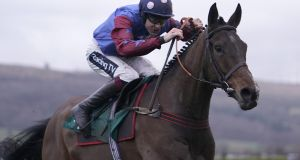 "Aidan Coleman guiding Paisley Park to victory in   The galliardhomes.com Cleeve Hurdle at Cheltenham in January. ""The form is there. It's the best English form. He has improved with every run.""  Photograph: Alan Crowhurst/Getty Images"