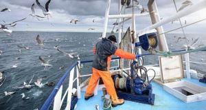 The Sea Fisheries (Amendment) Bill, which has been passed by the Dáil, restores access for Northern Ireland commercial fishing boats to Irish inshore waters, from zero to six miles offshore. File photograph: Getty
