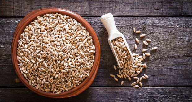 A bowl filled with spelt on a rustic wooden table. A wooden serving scoop is beside the bowl and some seeds spilled out. Photograph: iStock