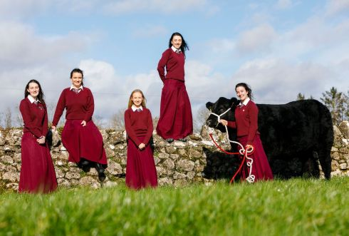 Pictured from left is Emily Walsh, Aoibhinn Leahy, Jane McNamara, Susan O'Neill and Aishling O'Neill from Laurel Hill secondary school in Limerick City who won the 2019 Certified Irish Angus Beef Schools Competition. The students took the top prize in the competition for rearing five Irish Angus calves for beef production, in spite of the fact that none of them come from a farming background. Photograph: Chris Bellew/Fennell Photography