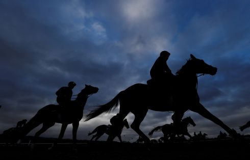 The morning gallops at Cheltenham Festival. Photograph: Paul Childs/Reuters