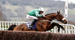Davy Russell riding Presenting Percy at Cheltenham last year. Photograph: Alan Crowhurst/Getty Images