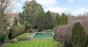 View of the garden with swimming pool.