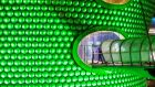Selfridges Birmingham, at the Bullring is lit green by Tourism Ireland to celebrate St Patrick's Day. Photo Lucy Ray/PA Wire